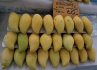 30july2006_mango2