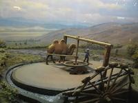 9jan2006_museum8