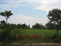 Land_2dec2005