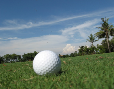 03jan2007_golf