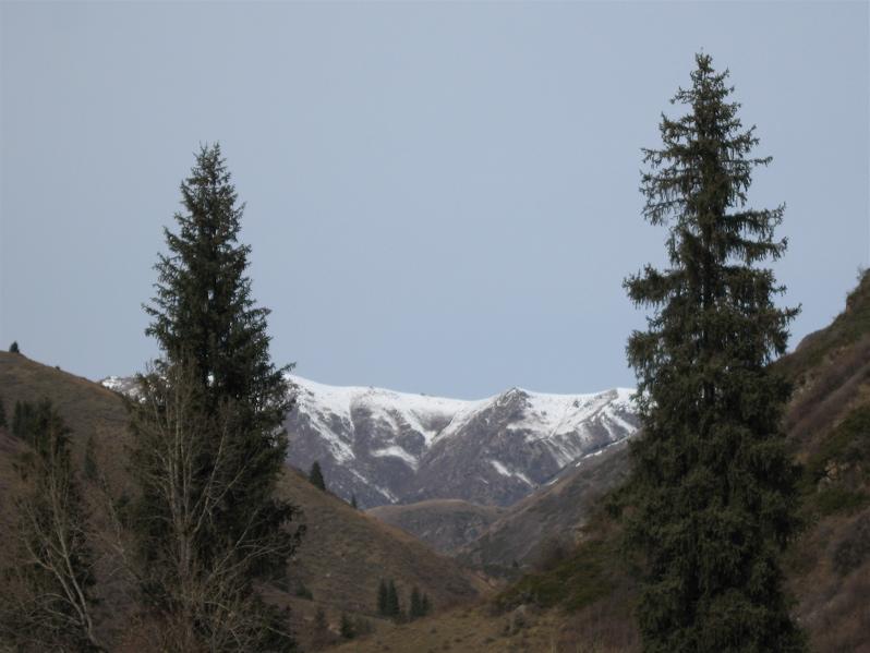 04nov2008_thurgen_valley1